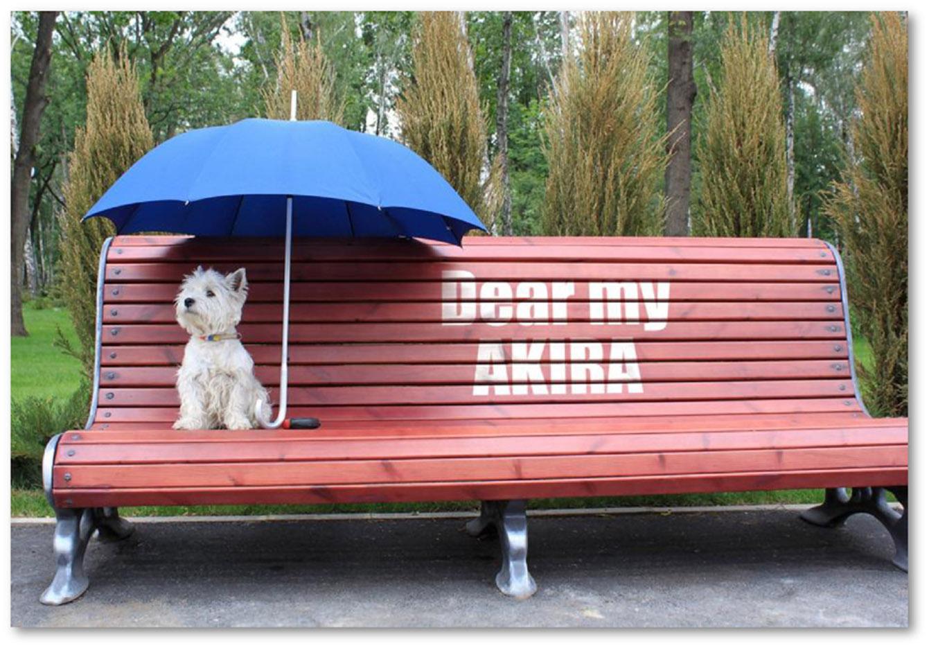 「傘と犬」をモチーフにしたカード。ベンチに書かれたペンキの文字を自由に変えることができる。