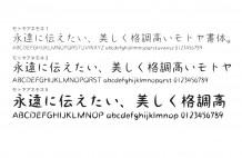 モトヤ_アネモネtop